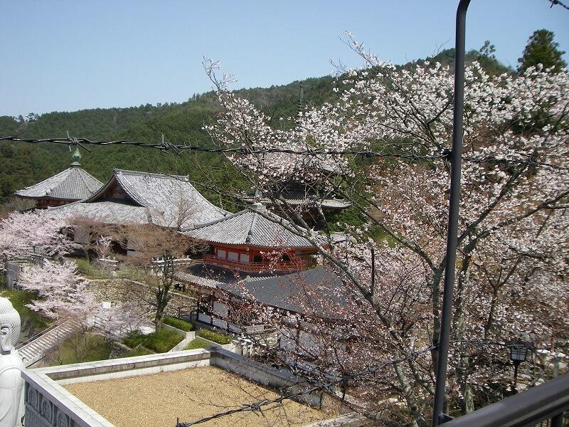 壷阪寺の横から、壷阪寺を見る