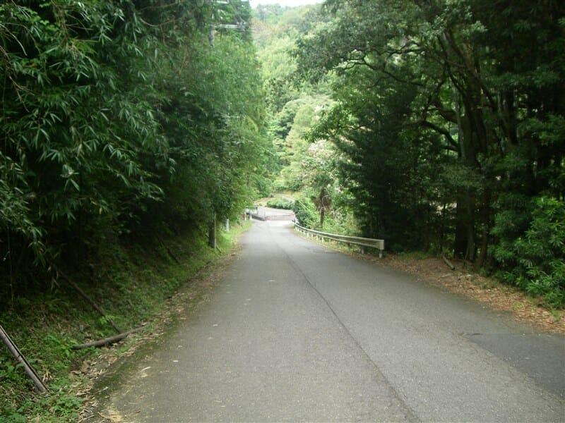和歌山県側への下り