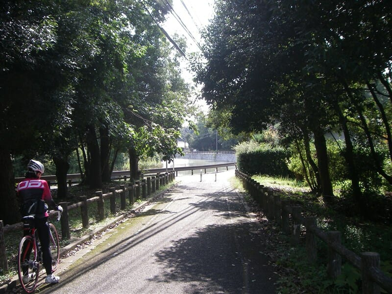 奈良自転車道で平城宮跡へ向かう