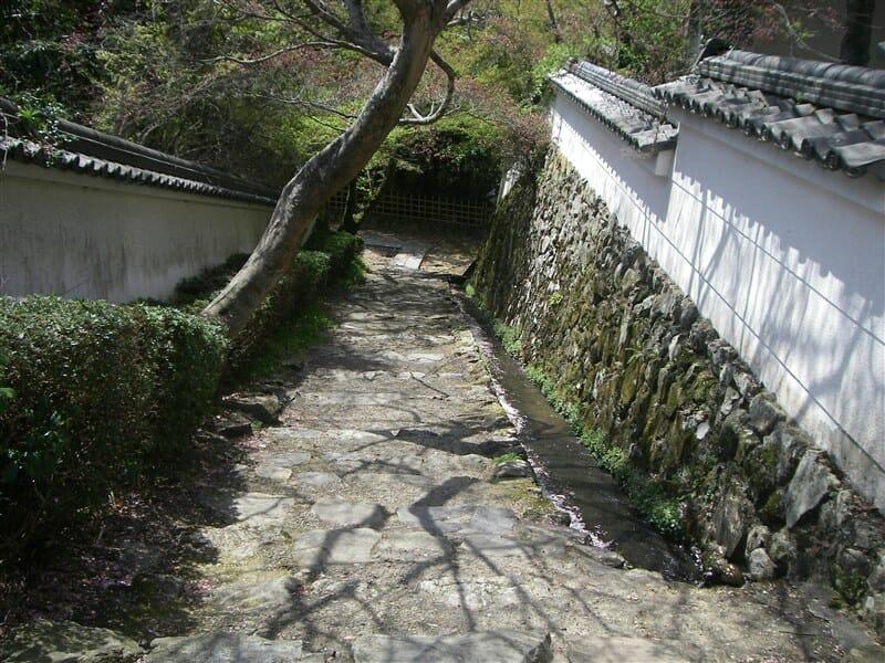 勝持寺 から 大原野神社へ