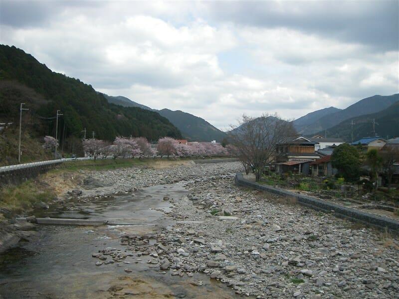 越知川名水街道