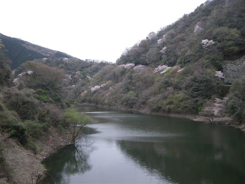 宇治川上流の瀬田川
