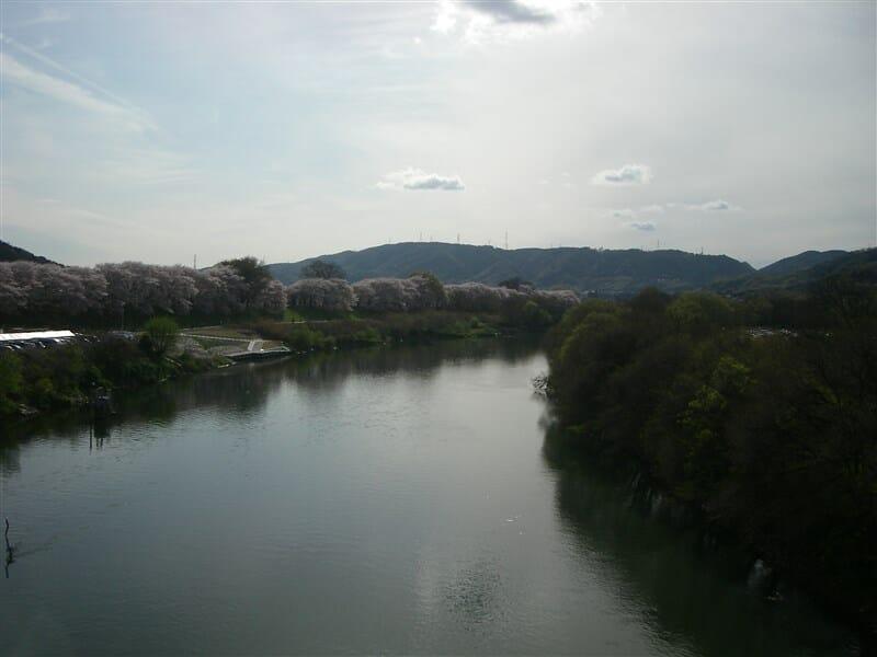 宇治川からの眺め