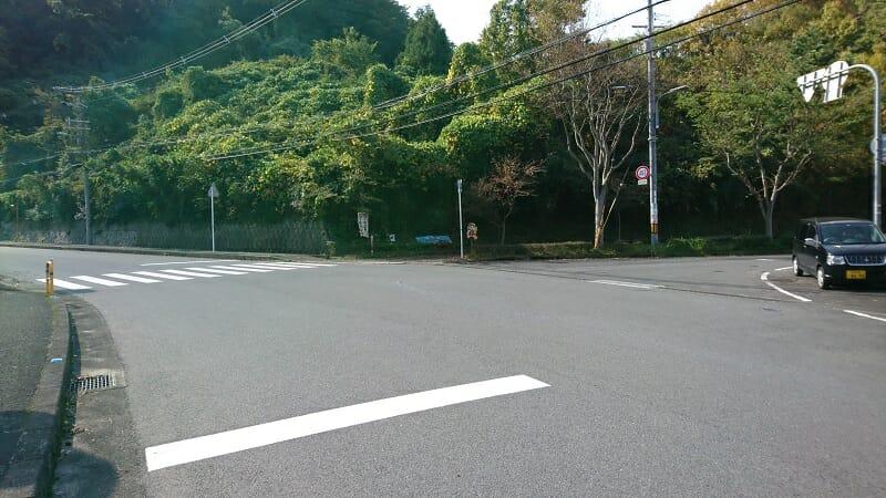 右:さくら坂に続く桜の並木通、左:R200-弘川寺方面