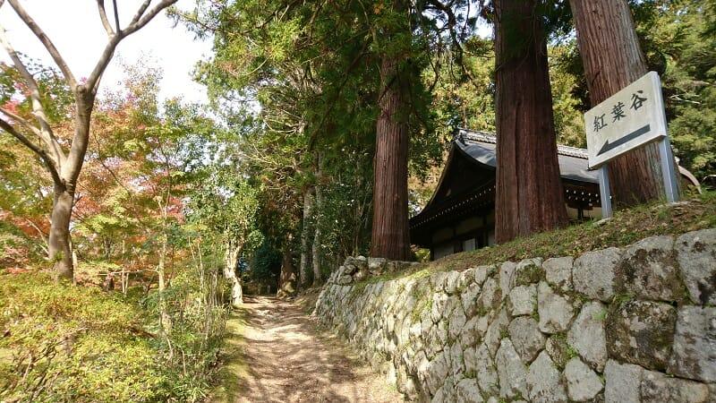 弘川寺の紅葉谷