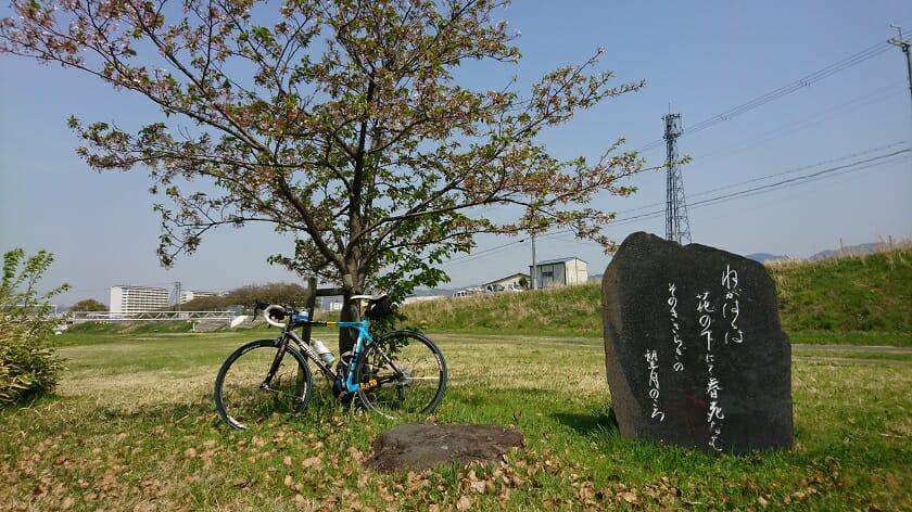 西行歌碑の桜:2018.04.10