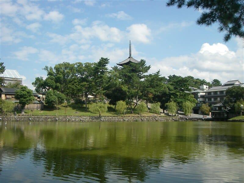 興福寺五重塔と池の柳が水面に映える猿沢池の景観