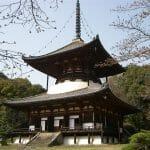 2015.05.10 32-2. 紀ノ川流域 追加