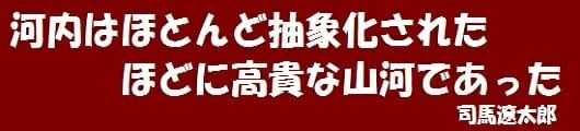 3-3. 河内みち