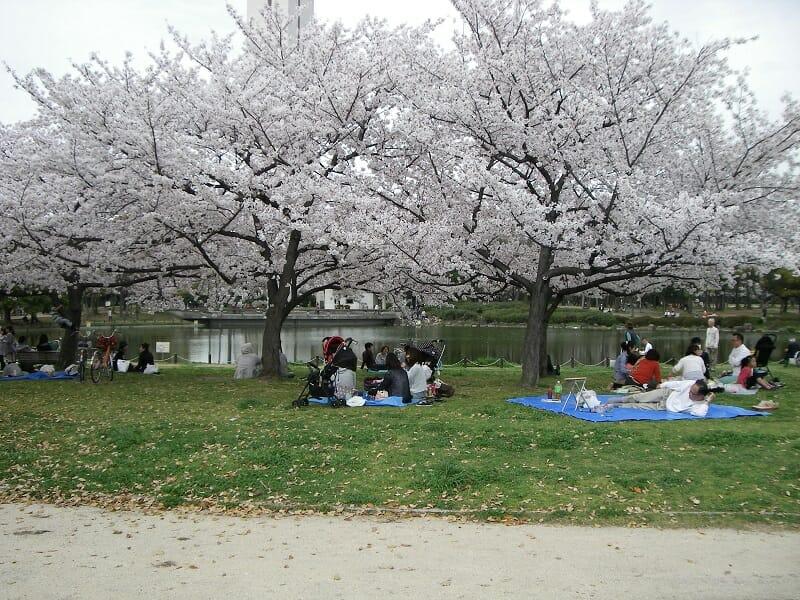 daisenkouen1