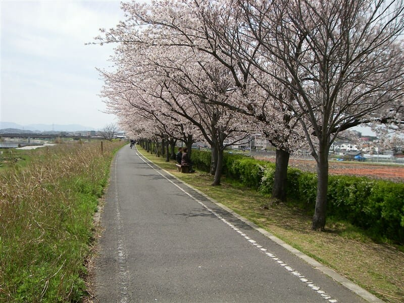 ishikawasak2
