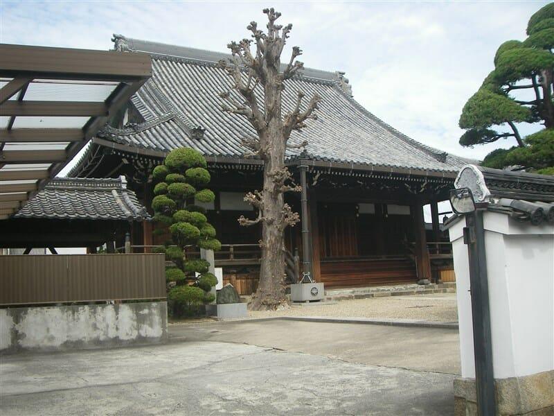 kouriyama24