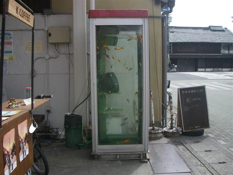 kouriyama30