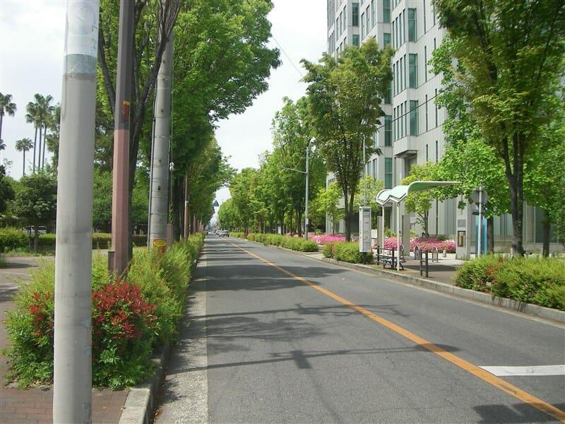 大阪市立大学通り
