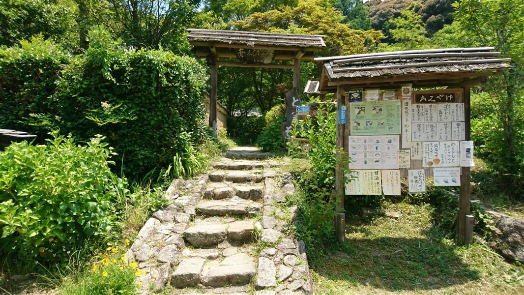 あ志び乃店 (アシビノミセ)