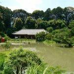 紫陽花と菖蒲が咲く浄瑠璃寺参拝と周辺周回