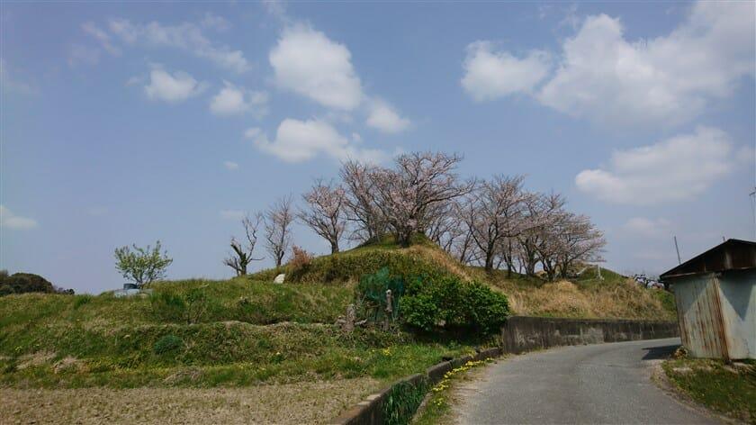 桜の二子塚古墳
