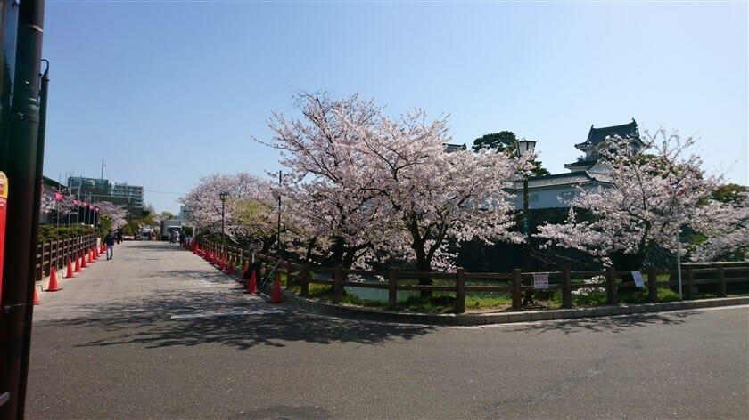 岸和田城に到着