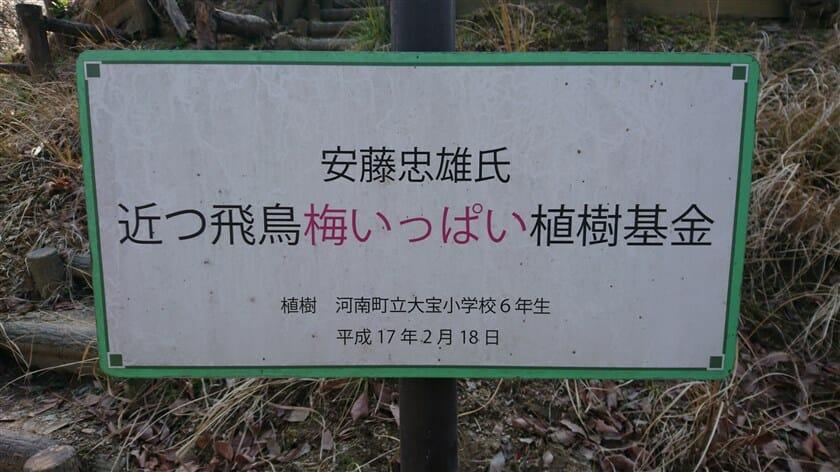 近つ飛鳥「梅いっぱい」植樹基金