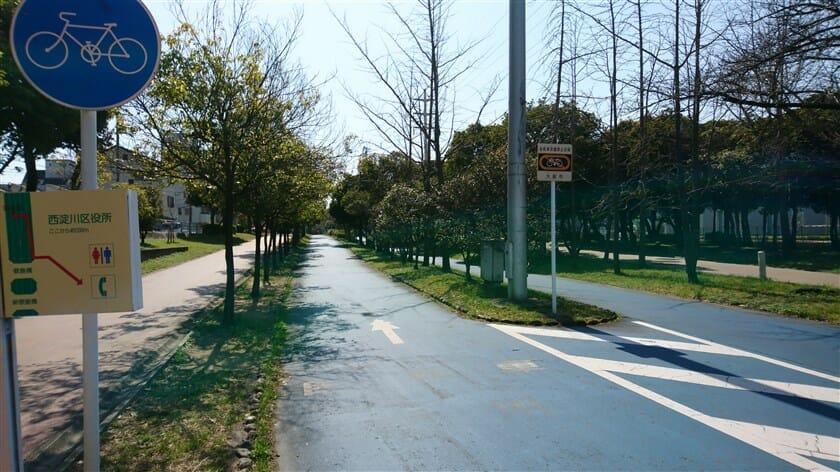 大野川緑陰道路