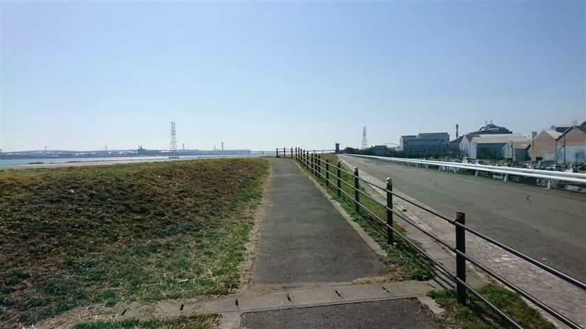大野川緑陰道路が終わり、淀川の堤防に上がる