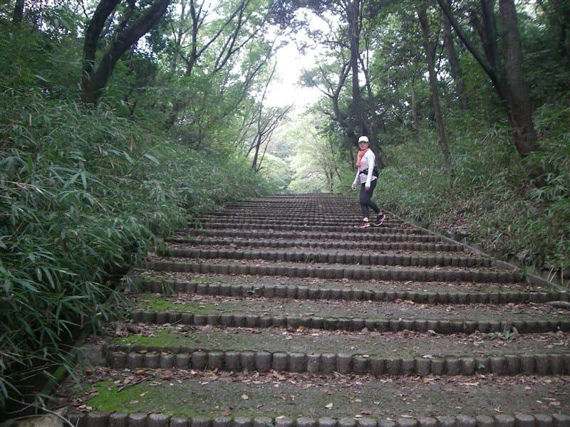 屯鶴峯への階段