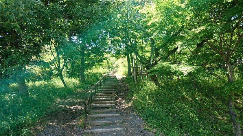 この上に、「笹尾山 石田三成陣跡」がある
