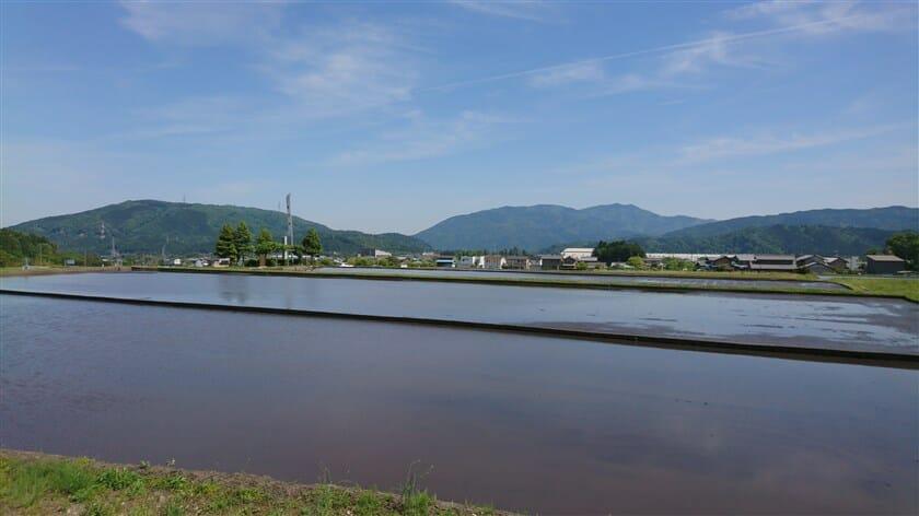 関ケ原の戦い 決戦地