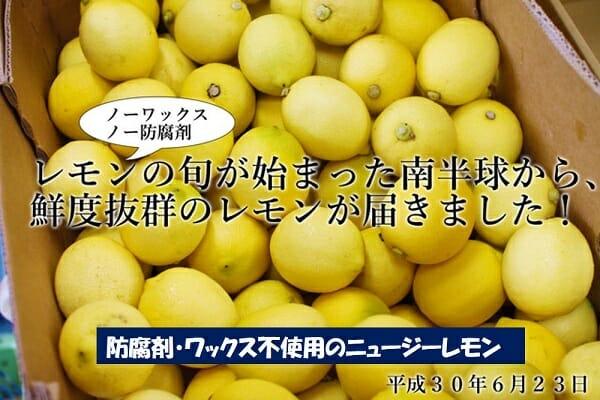 防腐剤・ワックス不使用のニュージーレモン