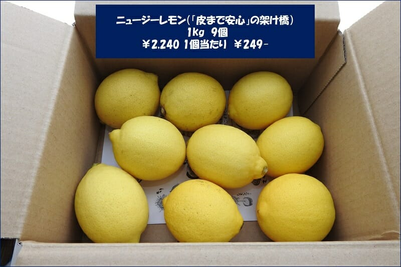 購入したレモン