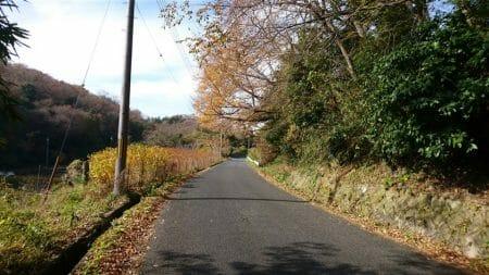 奈良県側からの十三峠