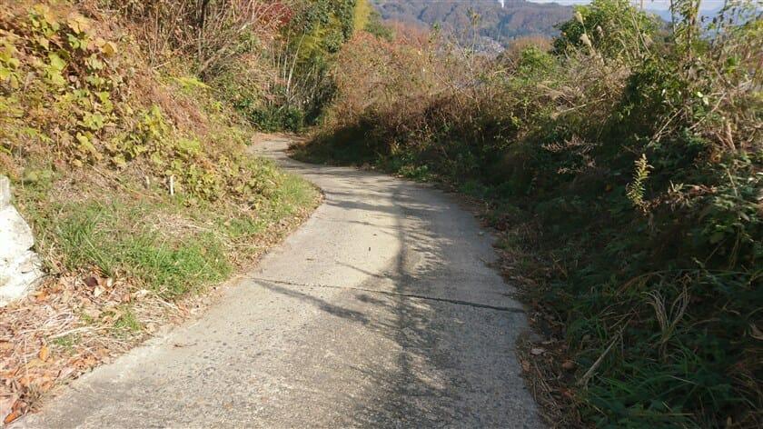 段々と下りの傾斜がきつくなり、且つ、舗装状況が悪くなる