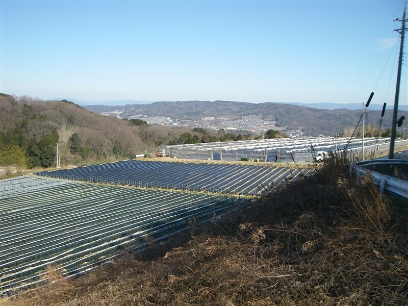 奈良県側への下りの風景