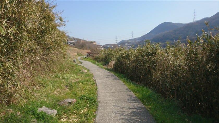 陸橋を越えるると、舗装された細い道になりバイクで走れる