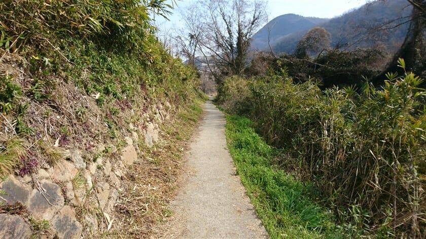 この付近の方々の「JR河内堅上駅」への生活道路で、人通りがある