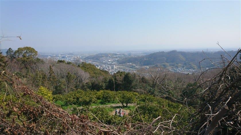 王寺・大和川方面を望む