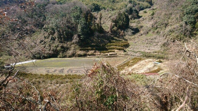 途中で谷底を覗いて見た様子。こんなところにも田んぼがある。