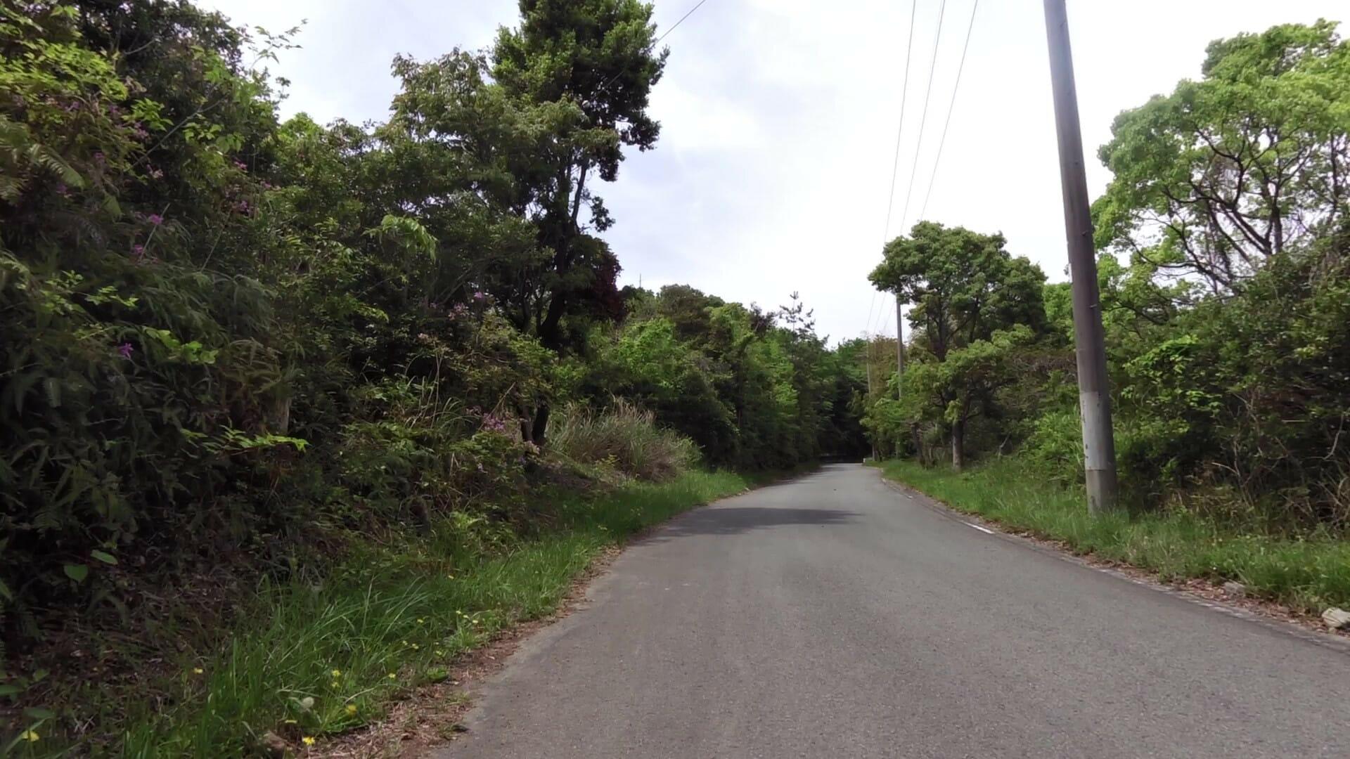甲山への登り