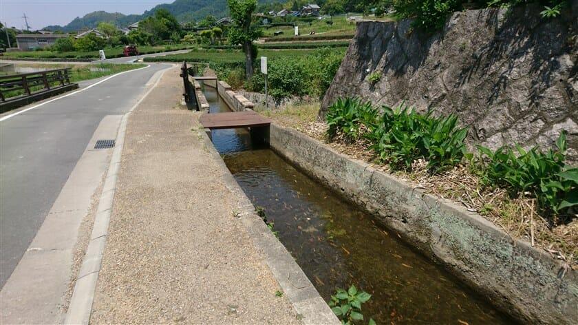 大農業水路