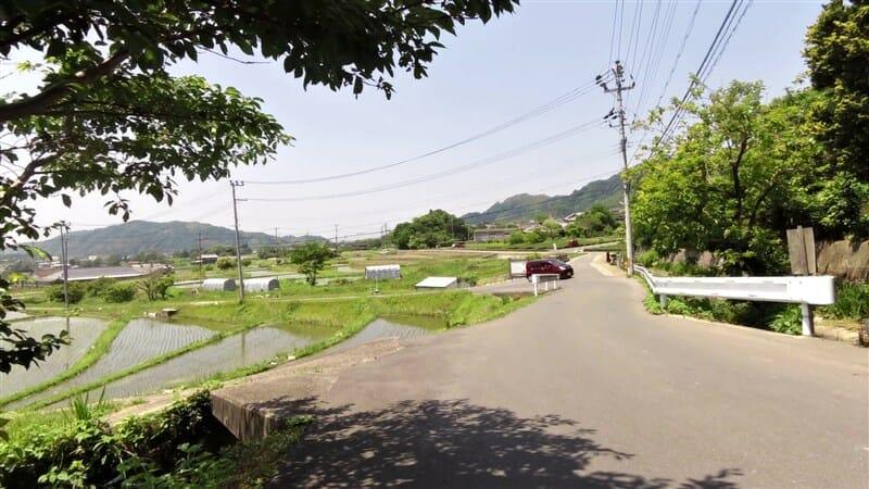 茶畑だけでなく、水田地帯もある里山地域に出た