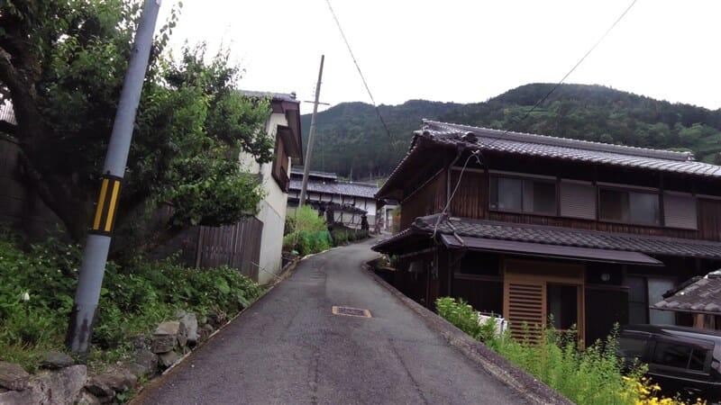 円形茶園への道