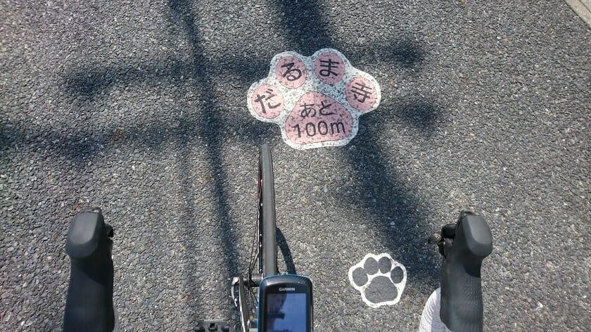R168の歩道には、犬の足跡がペイントされている
