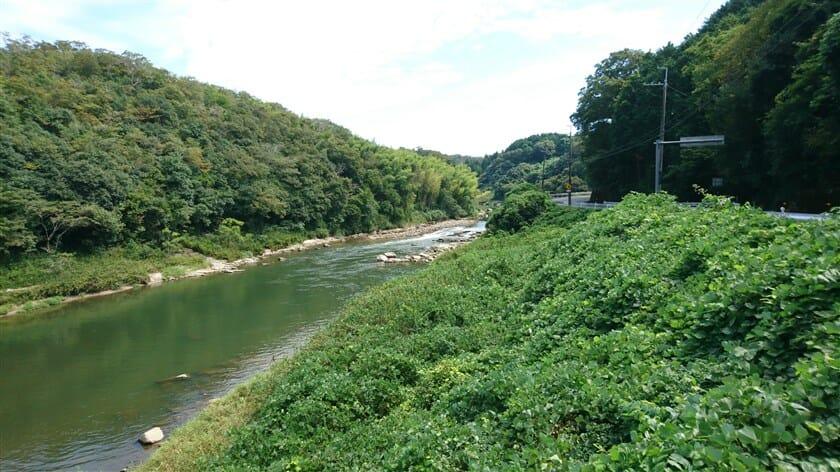 笹瀬橋(ささせばし)から望む、木津川の上流