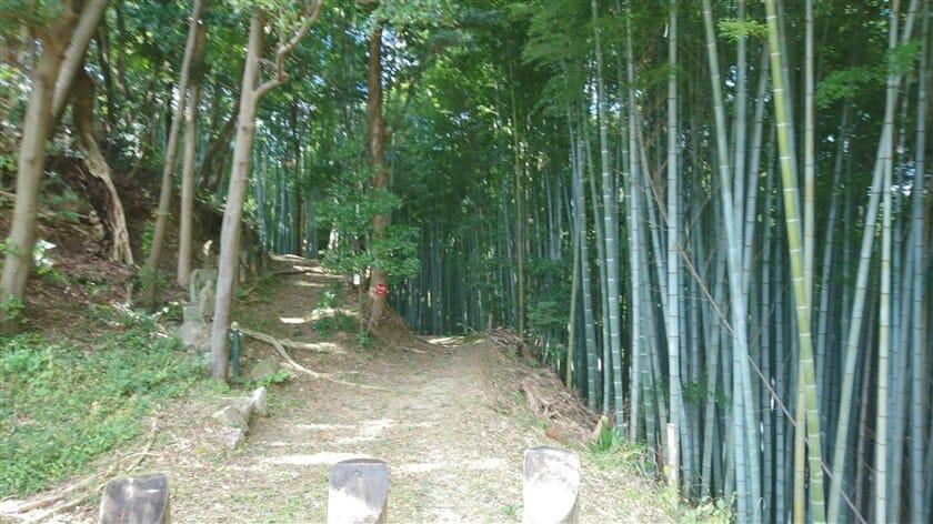 室木山方面への遊歩道