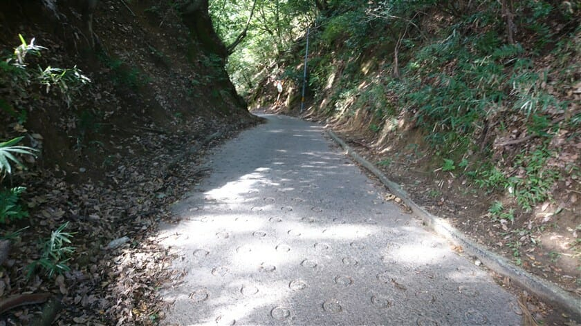 道には『O(オー)リング』がびっしりと入っているが、相当削れており、この辺りは暗峠にそっくりの様相をしている。