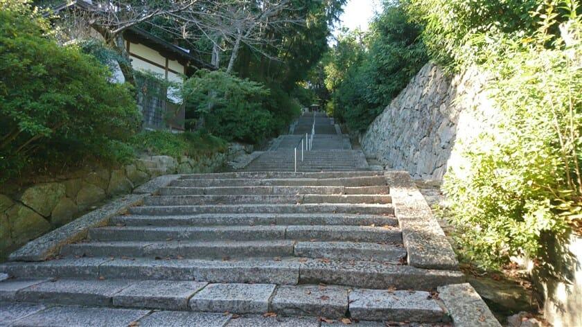 山門からの石段