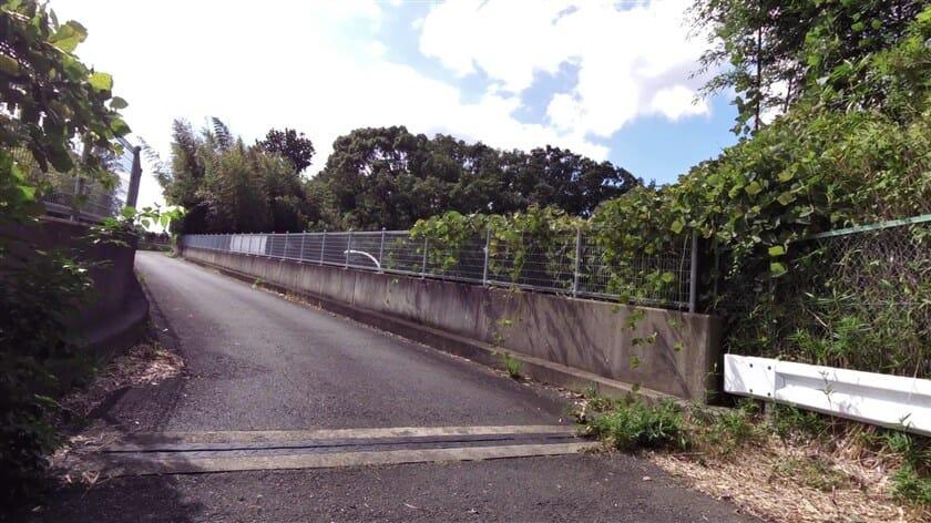 第二阪奈道路(国道308号) 谷山跨道橋