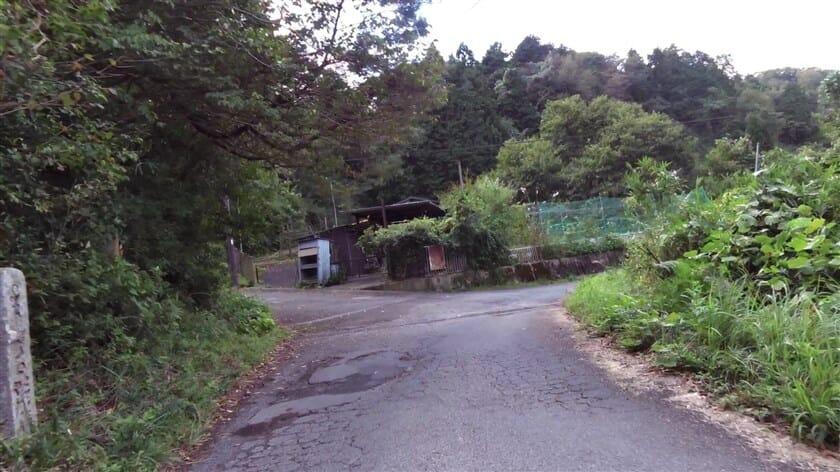 左:矢田山遊びの森 子ども交流館