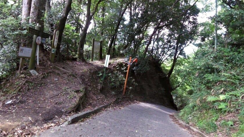 「榁ノ木峠 地蔵菩薩立像」の先は、いきなり落ちるような下りになる
