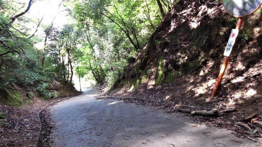 バイクで下るのが怖く、押し歩きにするもクリートが滑る